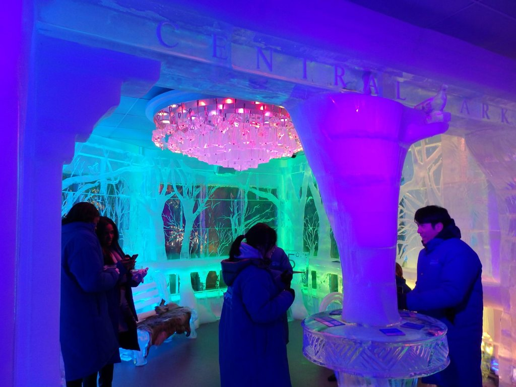 Most People Don T Know These 7 Amazing Ice Bars In New