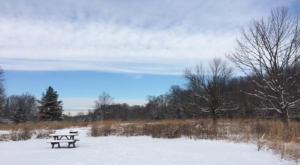 The Easy 1-Mile Winter Hike In Indianapolis That's Positively Bewitching