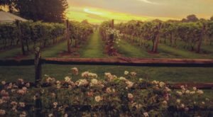 This One-Of-A-Kind Pennsylvania Winery Is Located In The Most Unforgettable Setting