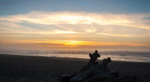 You Haven't Lived Until You've Experienced This One Incredible State Park In Northern California