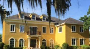 The Amazing Bed And Breakfast In Florida Where You Can Hang Out With Alpacas
