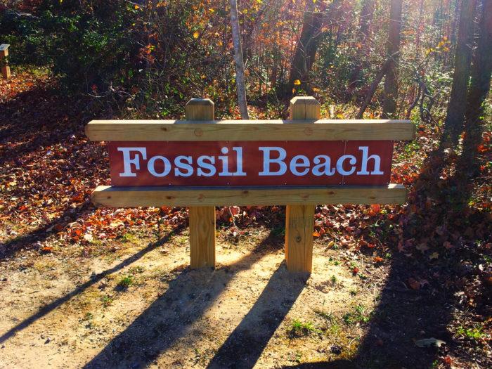 Virginia beach adult dating site