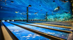 This One-Of-A-Kind Ocean Themed Restaurant And Bowling Alley In Iowa Is Insanely Fun