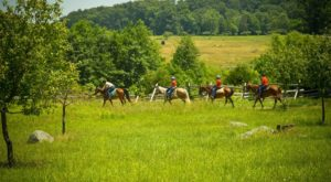This Horseback Tour Through The Pennsylvania Countryside Will Enchant You In The Best Way