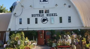 Everyone In Minnesota Should Visit This Amazing Antique Barn At Least Once