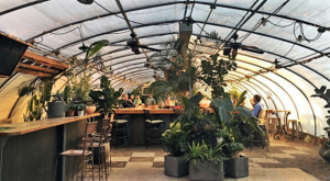 10 Of The Coolest, Most Unusual Places To Dine In Nashville