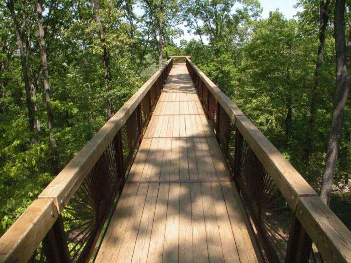 The Canopy Tree Walk At Bernheim Arboretum In Kentucky Is