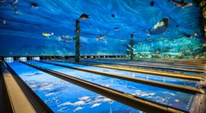 This One-Of-A-Kind Ocean Themed Restaurant And Bowling Alley In Washington Is Insanely Fun