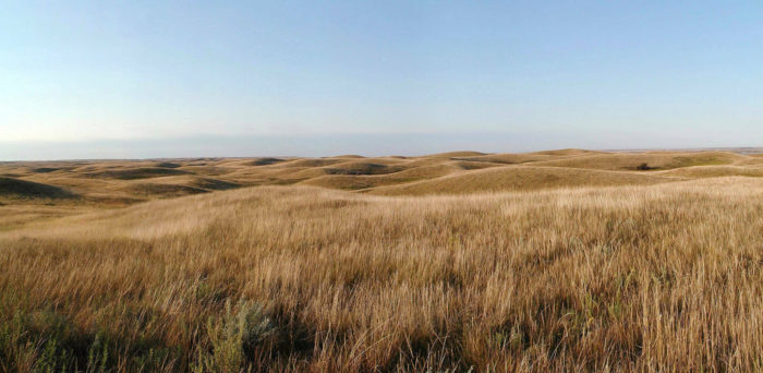 15 Stunning Photos Of America's Grasslands Like You've Never Seen Before