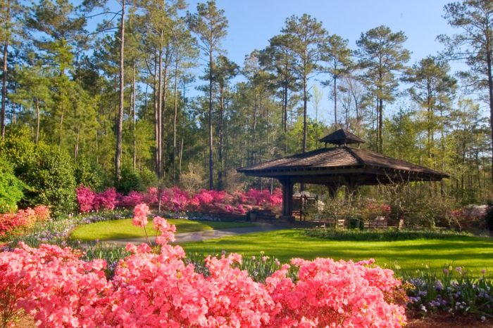 13 unimaginably beautiful places in georgia that you must see before you die for Places to stay near callaway gardens