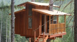 Sleep Underneath The Forest Canopy At This Epic Treehouse In Northern California