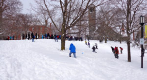 Here Are the 8 Best Places To Go Sled Riding In Boston This Winter