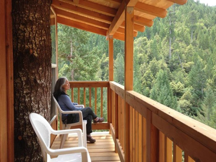 The Epic Treehouse In Northern California In A Redwood Forest