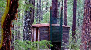 This Incredible Oregon Hike Will Take You To The World's Only Bigfoot Trap