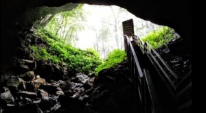 Few People Know About this Fossil Cave Hiding Right Here In West Virginia