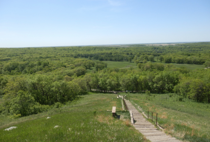 Devils Lake Nd >> Sullys Hill National Game Preserve Has The Greatest Short ...
