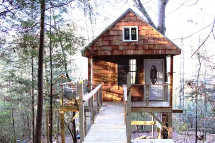 Experience The Kentucky Treehouse That S Located In The