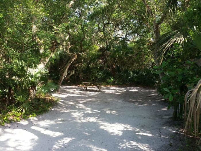 Honda St Augustine >> 13 Rustic Spots In Florida That Are Extraordinary For Camping