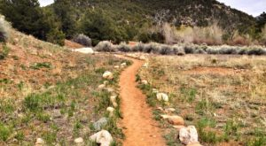 This Quaint Little Trail Is The Shortest And Sweetest Hike In New Mexico