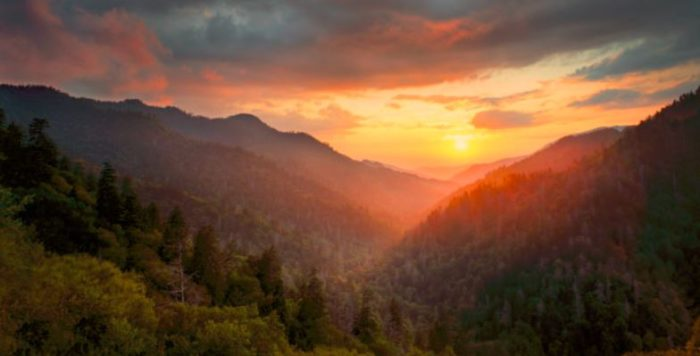 These Otherworldly Pictures Of The Great Smoky Mountains Will Inspire Your Next Trip