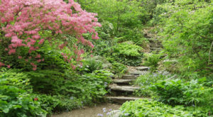 The Park Near Boston That Will Make You Feel Like You Walked Into A Fairy Tale