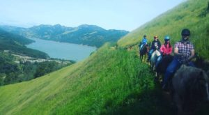 This Horseback Ride Through The Bay Area Countryside Will Enchant You In The Best Way Possible