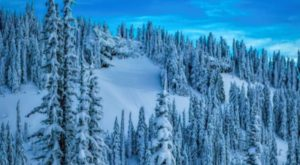 The Snowiest Place In The Continental U.S. Is Like Something From A Dream