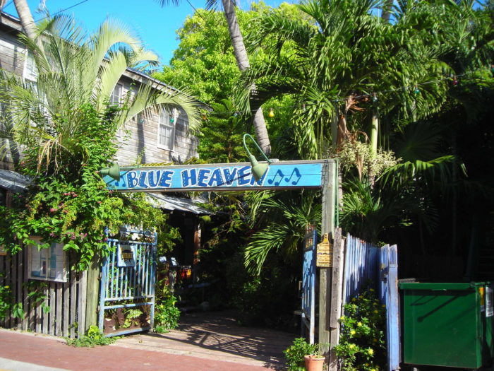 Dine At These 10 Tropical Restaurants In Florida For A