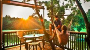 You Can Stay The Night In A Treehouse At This Beautiful Southern Vineyard