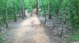 These 7 Simple Trails In Louisiana Are Hidden Gems Waiting To Be Explored
