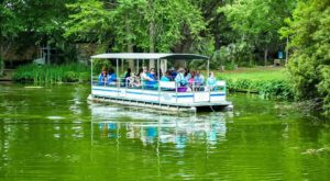 The Safari Boat Ride In Louisiana That's Fun For The Whole Family