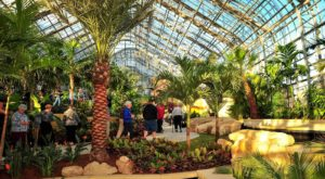 This Massive Greenhouse In Nebraska Is Like A Dream Come True
