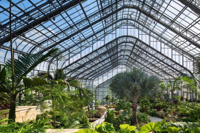 Laurtizen gardens in omaha has the best greenhouse in nebraska for Garden design proposal