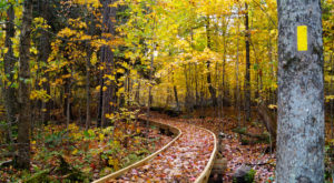 The One Incredible Trail That Spans The Entire State of Wisconsin
