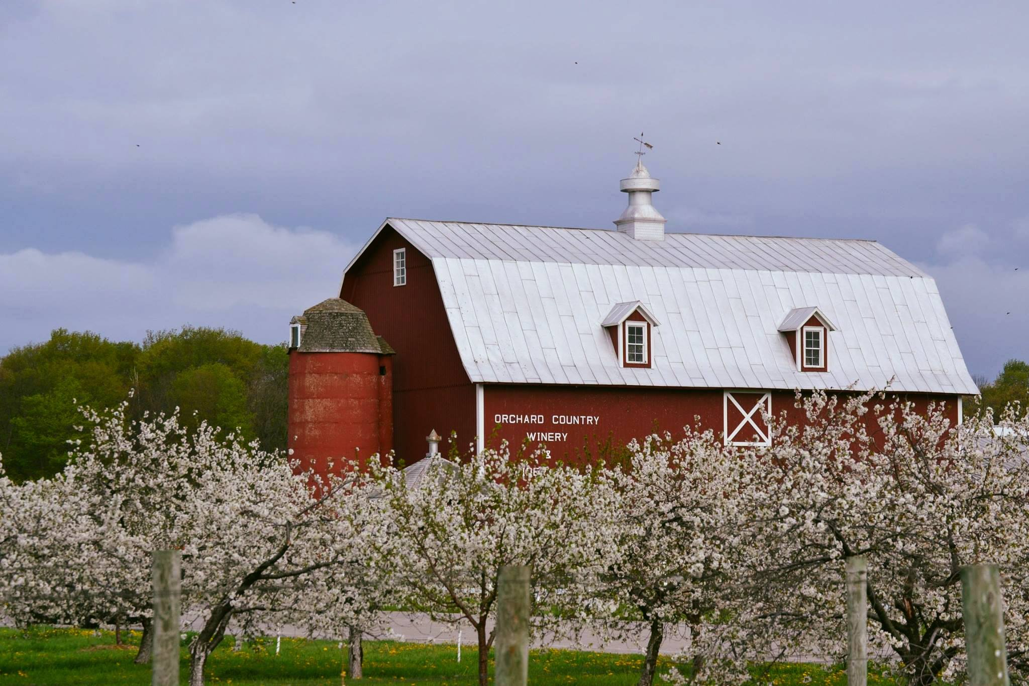 Door County Is A Magical Place To See Cherry Blossoms In