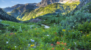 The Secret Garden Hike In Colorado Will Make You Feel Like You're In A Fairytale