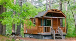 This Log Cabin Campground In Massachusetts May Just Be Your New Favorite Destination