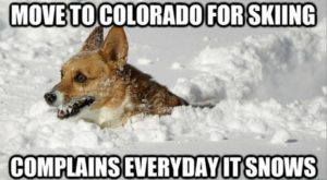 These 15 Pictures Prove That Coloradans Have The Best Sense Of Humor