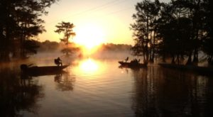 You'll Never Run Out Of Things To Do At The Biggest State Park In Louisiana