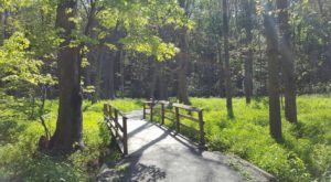 7 Totally Kid-Friendly Hikes In New York That Are 1 Mile And Under