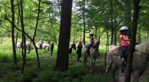 This Horseback Tour Through The Wisconsin Countryside Will Enchant You In The Best Way