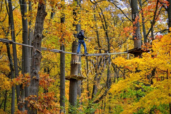 Connecticut S Aerial Forest Adventure At The Discovery