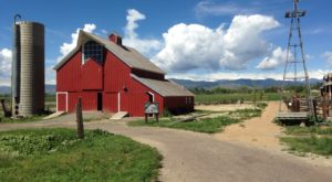 This Charming Farm Near Denver Is Picture Perfect For Your Next Day Trip