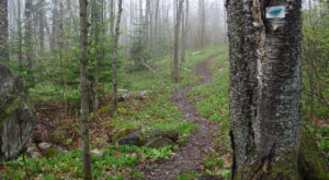 The One Incredible Trail That Spans The Entire State of Minnesota