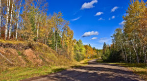 8 Undeniable Difference Between the Northern And Southern Parts of Minnesota