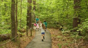 5 Totally Kid-Friendly Hikes In Louisiana That Are 1 Mile And Under