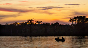 You'll Love A Trip To This Waterfront State Park Just Outside Of New Orleans