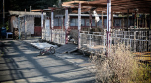 The Creepy Abandoned Theme Park In Northern California You Have To See With Your Own Eyes