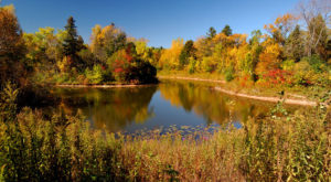 This Enchanting Spot In Milwaukee Is A Nature Lover's Dream