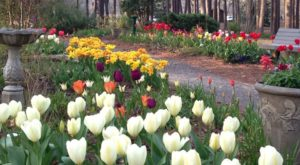 The Most Amazing Park In Louisiana You've Probably Never Heard Of